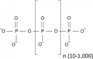 Figiure 1. Schematic view of an inorganic polyphosphate polymer.